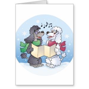 poodles_christmas_caroling_cards-r894ab1fec7bc4deab1303b360236ff98_xvuat_8byvr_512